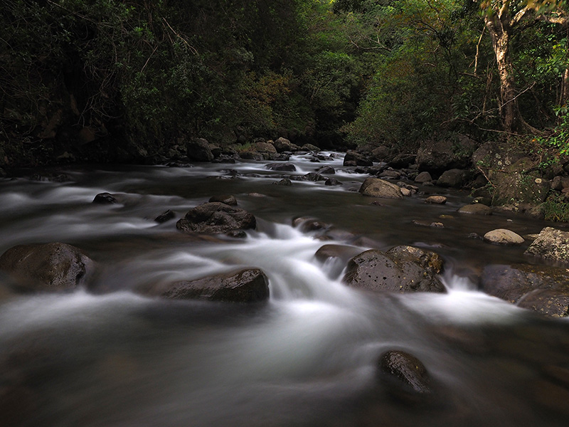 Iao Stream, Maui, Hawaii
